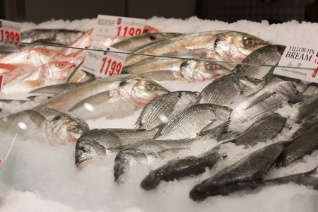 tonnes: SYDNEY, AUSTRALIA - APRIL 9, 2015:  Different kind of fishes on the Sydney Fish Market. 52 tonnes of seafood are selling at auction on this market every day.