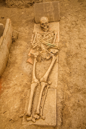kostolac: KOSTOLAC, SERBIA - AUGUST 15, 2014: Human remains at Viminacium site near Kostolac, Serbia. Viminacium was a major city of the Roman province of Moesia, distroyed at 6th century. Editorial