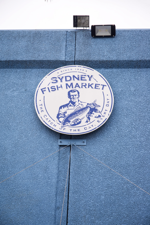 tonnes: SYDNEY, AUSTRALIA - APRIL 9, 2015: Detail from the Sydney Fish Market. 52 tonnes of seafood are selling at auction on this market every day.