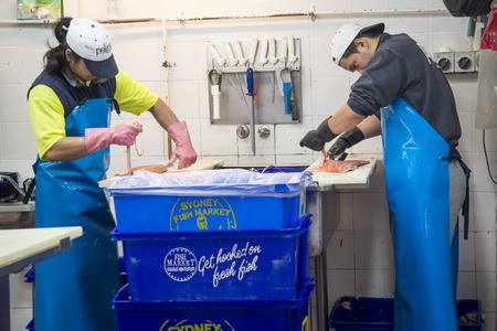 tonnes: SYDNEY, AUSTRALIA - APRIL 9, 2015: Unidentified people on the Sydney Fish Market. 52 tonnes of seafood are selling at auction on this market every day.