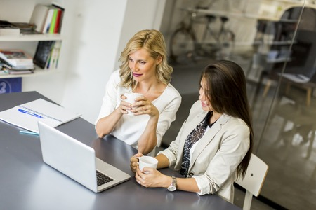 woman business: Young women in the office