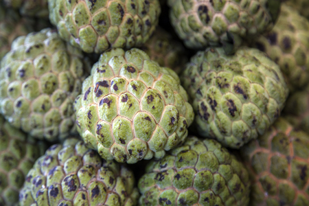 sweetsop: Close up view at Sugar Apples or Sweetsop