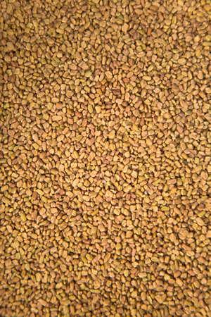fenugreek: Fenugreek seeds
