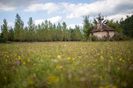 holidays vacancy: Countryside Stock Photo
