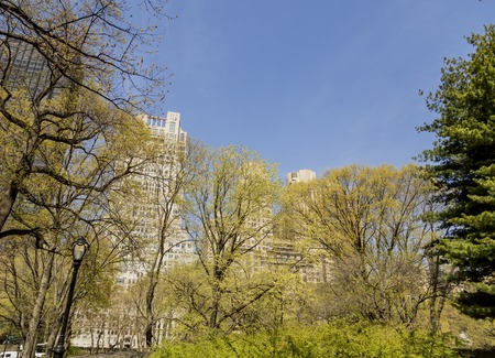 urban scenics: Detail of the Central Park in New York City, USA Stock Photo