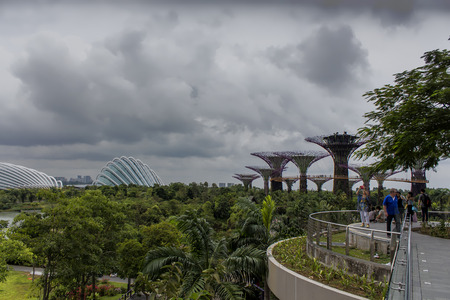 Garden By The Bay August 2014 supertrees images & stock pictures. royalty free supertrees photos