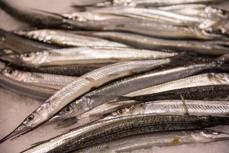 tonnes: Garfish on the Sydney Fish Market. 52 tonnes of seafood are selling at auction on this market every day.