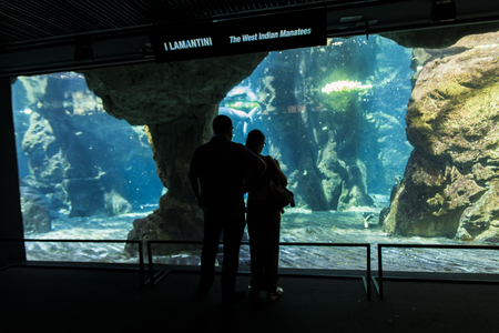 aquarium visit: GENOA, ITALY - JUNE 2, 2015: Unidentified people at Genoa aquarium. The Aquarium of Genoa is the largest aquarium in Italy and among the largest in Europe. Editorial