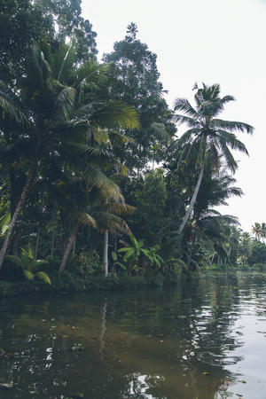 backwaters: Backwaters in Kerala, India. The backwaters are an extensive network of 41 west flowing interlocking rivers, lakes and canals that center around Alleppey, Kumarakom and Punnamada. Stock Photo