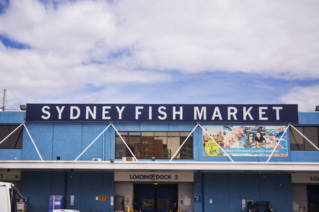 tonnes: SYDNEY, AUSTRALIA - APRIL 9, 2015: View at Sydney Fish Market. 52 tonnes of seafood are selling at auction on this market every day.