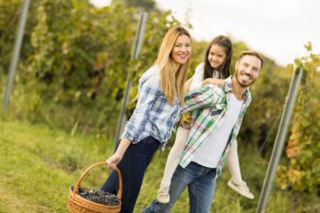 frock: Happy family in vineyard at sunny day Stock Photo