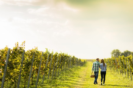 Couple of winegrowers walking in vineyard Imagens