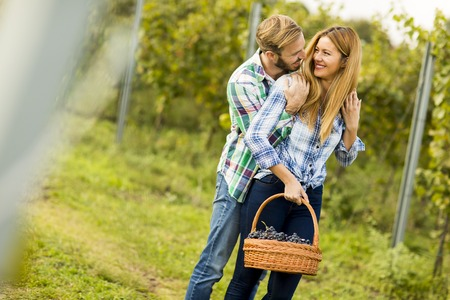 timber harvesting: Young couple with a basket full of grapes in the vineyard