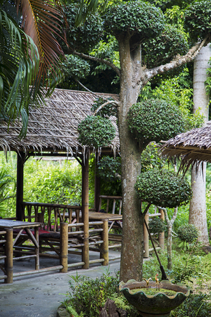 bungalows: Bungalows on a tropical beach with lush green tropical forest