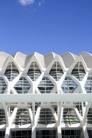 felix: VALENCIA, SPAIN - SEPTEMBER 30, 2012: Detail of the City of Arts and Sciences in Valencia, Spain. City was Designed by Santiago Calatrava and Felix Candela and was finished at 1998. Editorial