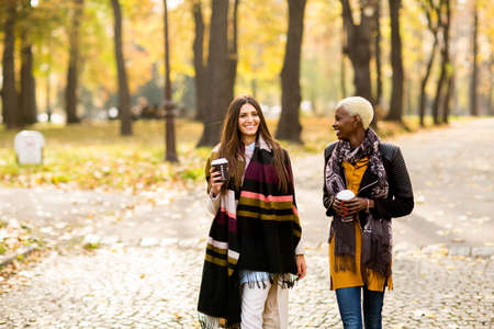 Multiracial female friends walking in teh autumn park