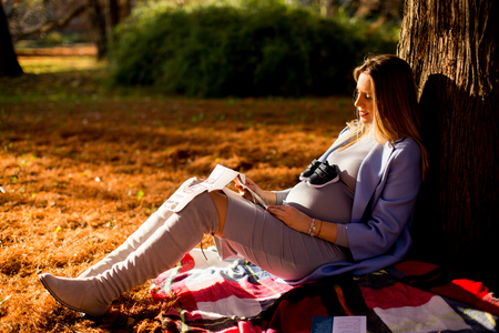 Young pregnant woman sitting under a tree in the autumn park and looking at a snapshot of ultrasound Stock Photo