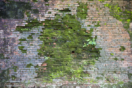 Closeup detail of the old green stone wall