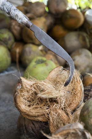 Coconuts on the market in Mekong Delta, Vietnam Stock Photo