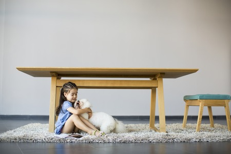 Little girl playing with white poodle in the room 版權商用圖片
