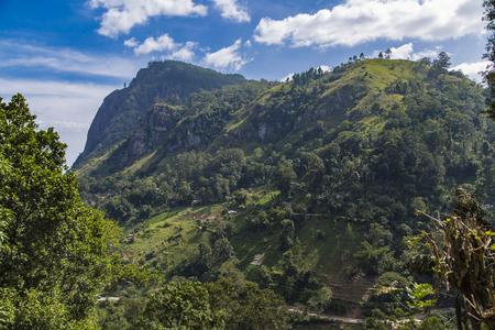 Beautifulnature of Nuwara Eliya, Sri Lanka