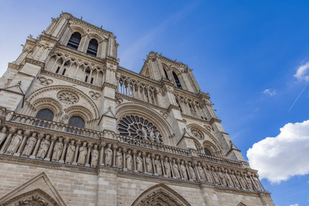 Detail van de kathedraal Notre Dame de Paris, Frankrijk