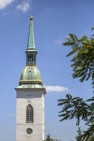 Detail van de St. Martin Cathedral in Bratislava, Slowakije