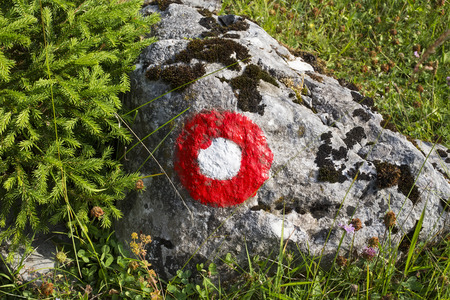 Red and white circle trail blazing sign in the forest Stock fotó