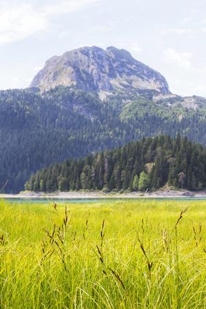 View at Black Lake on Durmitor mountain in Montenegro Zdjęcie Seryjne