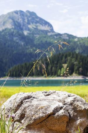 View at Black Lake on Durmitor mountain in Montenegro Фото со стока