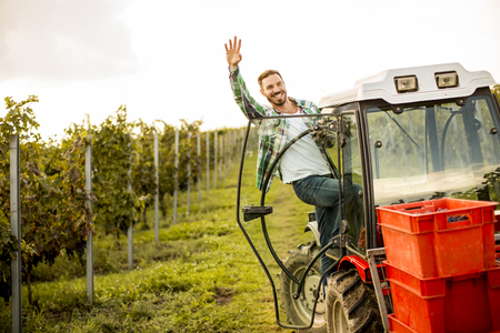 Handsome young man working on the tractor in the vineyard Фото со стока - 85640314