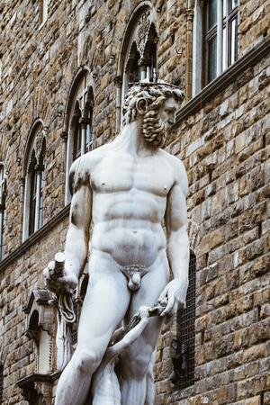 フィレンツェの海王星の泉の詳細, イタリア