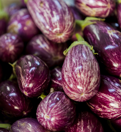 View at  pile of eggplants at market