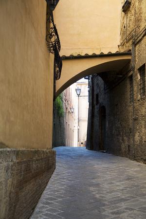 シエナ(イタリア)の伝統的な家を眺め