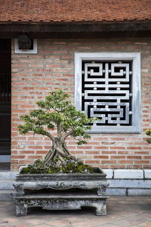 ベトナム・ハノイの文学寺院からの詳細