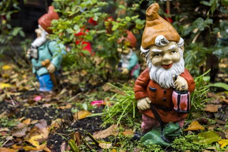 Closeup of the garden gnome in the autumn backyard
