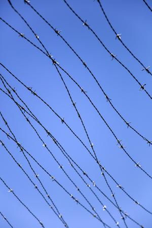 푸른 하늘 아래 barbwire의 근접 촬영 스톡 콘텐츠 - 94907526