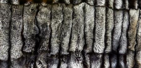 Closeup of the natural silver fox furs Banco de Imagens