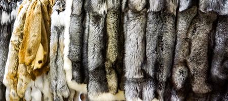 Closeup of the silver and red fox furs Banco de Imagens