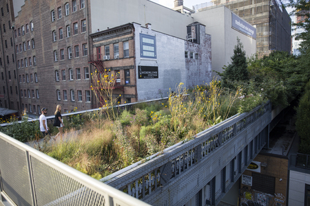 NEW YORK - USA - AUGUST 31, 2017: Unidentified people at High Line in New York City. It is 2,33km long elevated linear park created on a former New York Central Railroad spur.