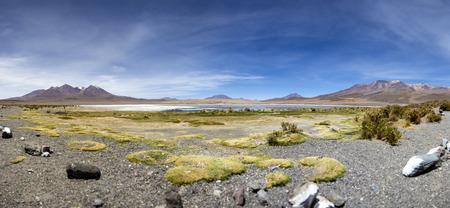 Laguna Colorada at Eduardo Avaroa Andean Fauna National Reserve in Bolivia