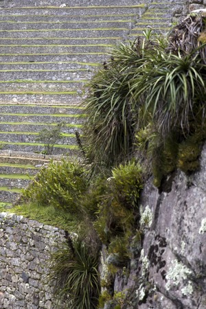 Detail of the stone wall at Machu Picchu, Peru Stok Fotoğraf