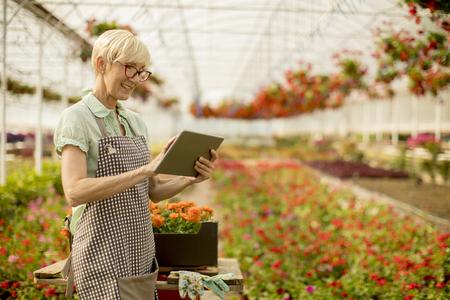 Portrait of senior woman using tablet in flower garden