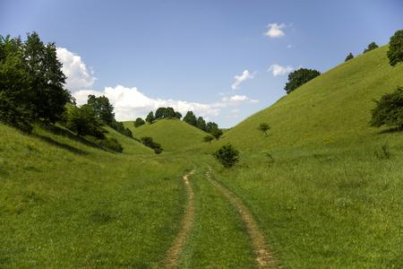 Zagajica hills in Serbia, beautiful landscape at one summer  day Stock Photo