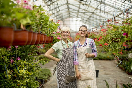 Two women working in the greenhouse garden