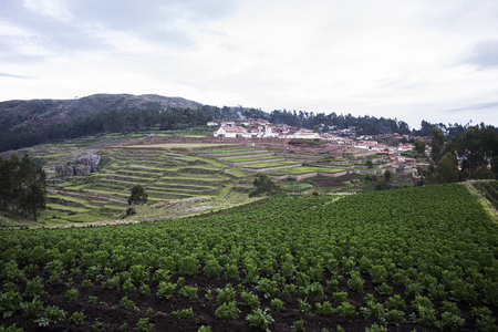 View at agricultural terraces in Cusco, Peru