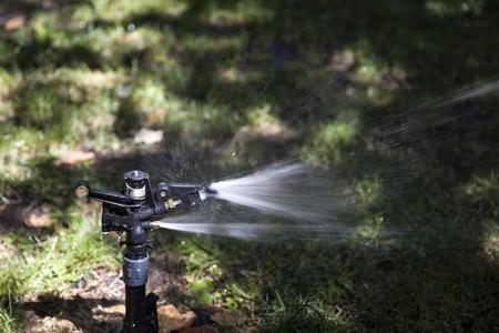 View at water sprinkler in the garden 写真素材