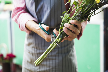Charrming senior woman sales flowers on local market