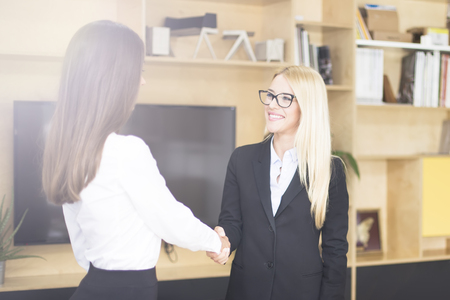 Two businesswomen shaking hands as they close a deal or partnership Stock Photo - 118420293