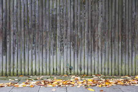 Detail of the old wooden trunk fence with autumn leaves on pavement Stock Photo